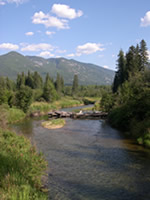Fly Fishing Lake Creek Montana
