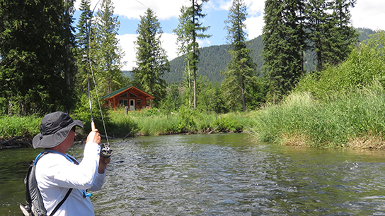 Fly Fishing in Front od Little CeDAR